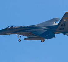 WA AF 84-0024 F-15C Eagle On Approach by Henry Plumley