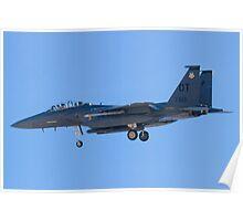 OT AF 91-0601 F-15E Strike Eagle Poster