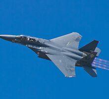 SJ AF 87 0179 F-15E Strike Eagle Left Bank  by Henry Plumley