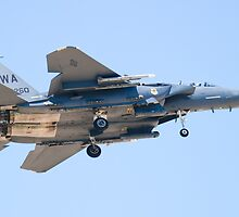 WA AF 90-0260, F-15E Strike Eagle by Henry Plumley