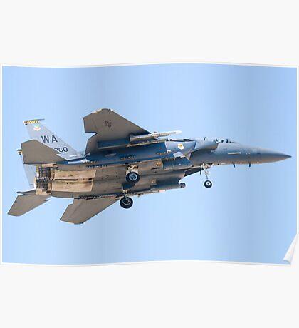 WA AF 90-0260, F-15E Strike Eagle Poster