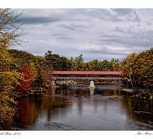 Saco River Autumn by Richard Bean