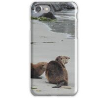 Otters iPhone Case/Skin