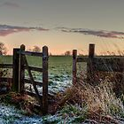 The Gate ... by mountainsandsky
