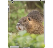 coypu, or nutria (Myocastor coypus) Israel, Hula Valley iPad Case/Skin
