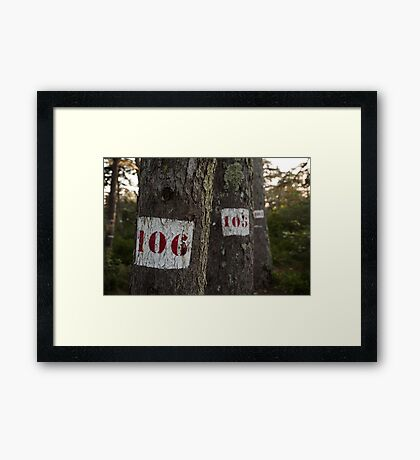 Tree is the magic number Framed Print