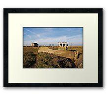 Hulk on Thornham Marsh Framed Print