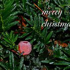 Christmas Card by K.J. Summerfield