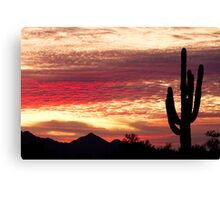 Tequila Sunrise 2 Canvas Print