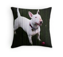 Waiting for a Throw Throw Pillow