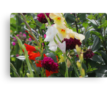 Multi-coloured flowers Canvas Print
