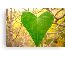 Heart of the Nature Canvas Print