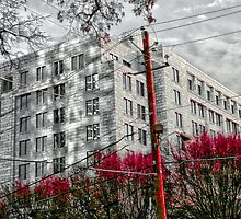 Georgia Federal Reserve - Atlanta, Ga. by Scott Mitchell