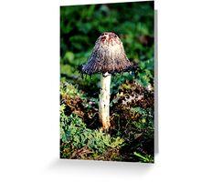 Ink Cap Wild Mushroom Greeting Card