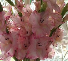 Gladiola Bouquet by Sandra Foster