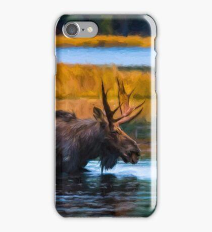 Algonquin Park Moose iPhone Case/Skin