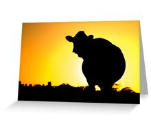 Sunset Silhouette Cow Greeting Card