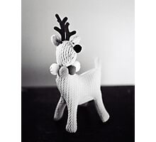Oh Deer... Photographic Print