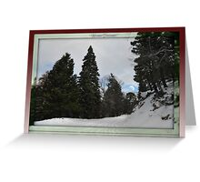 """ Winter dreams "" Greeting Card"