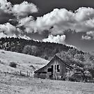 The Old Barn by Bryan Peterson