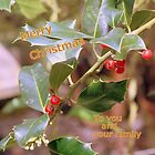 Holly Xmas(from my family to your family) by elphonline