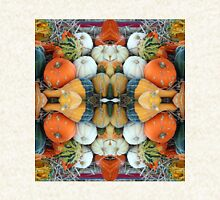 Gourds 'n' Punkins - In the Mirror Pullover