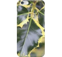 Trio Holly Leaves iPhone Case/Skin