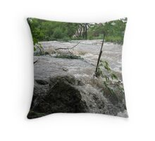 Torrent of Water Throw Pillow