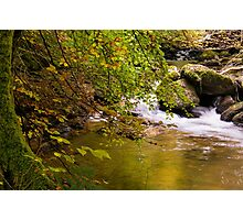 Autumn River Photographic Print