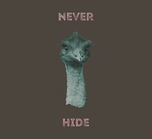 Never Hide by Conundrum Arts