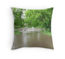 No Crossing Today Throw Pillow