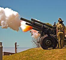Fire!  - 19 Gun Salute by TonyCrehan
