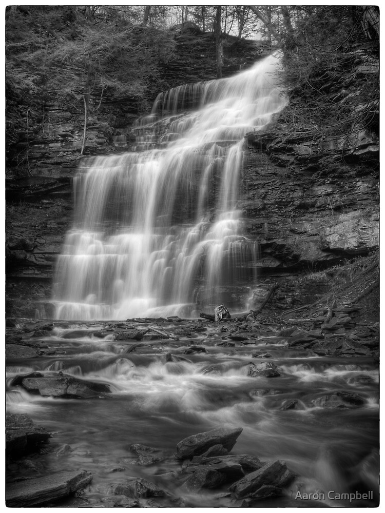 Ganoga Falls November 2011 by Aaron Campbell