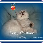 MERRY MERRY MEOW! by Claire Moreau