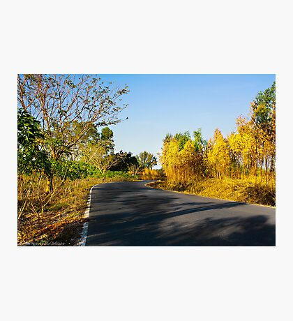 Sentiment of Perspective - Afternoon Countryside Road  Photographic Print