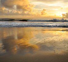 Good as Gold - Bribie Island by Barbara Burkhardt