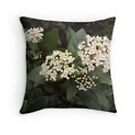 Viburnum cushion