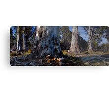 Skullbone Plains Metal Print