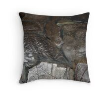 Faces on Rock IV Throw Pillow