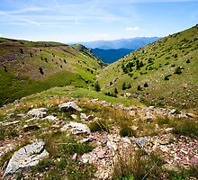 Pyrenean Slopes, Catalonia by Marc Garrido Clotet