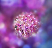 Pinky by ♛ VIAINA