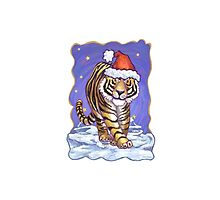 Tiger Christmas by ImagineThatNYC
