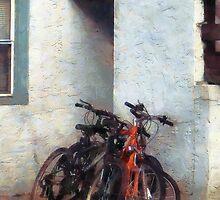 Bicycles in Yard by Susan Savad