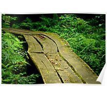 Wetlands Walkway Poster