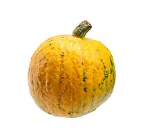 Yellow pumpkin isolated on white background. Photographic Print