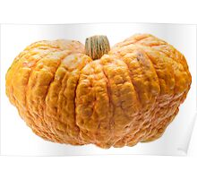 Orange pumpkin isolated on white background. Poster