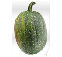 Green pumpkin isolated on white background. Poster
