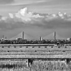 Charleston Skyline by DCCastelhano