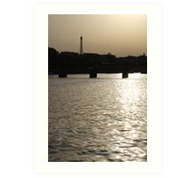 Paris - Seine reflections August 2011 Art Print