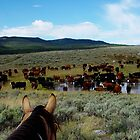 Wyoming Cowboying by levipie